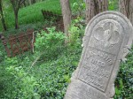 An abandoned cemetery, Bolton, ON 1863